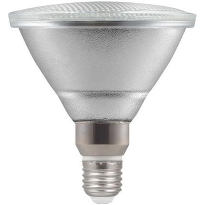 Picture of LED PAR38 Clear Bulb 13W 4498