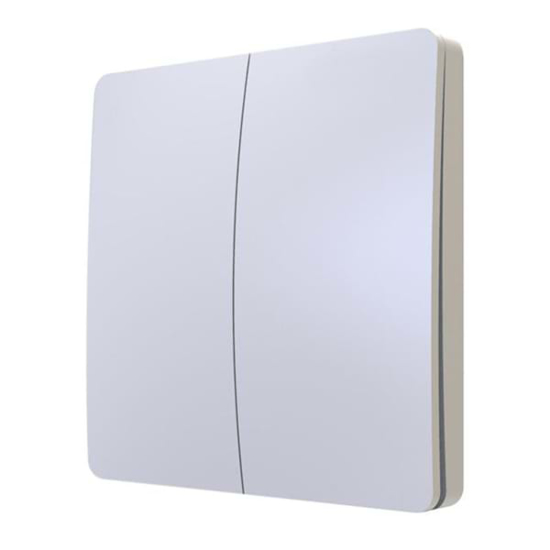 2 gang white wall switch